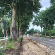 Bomen-langs-N-wegen